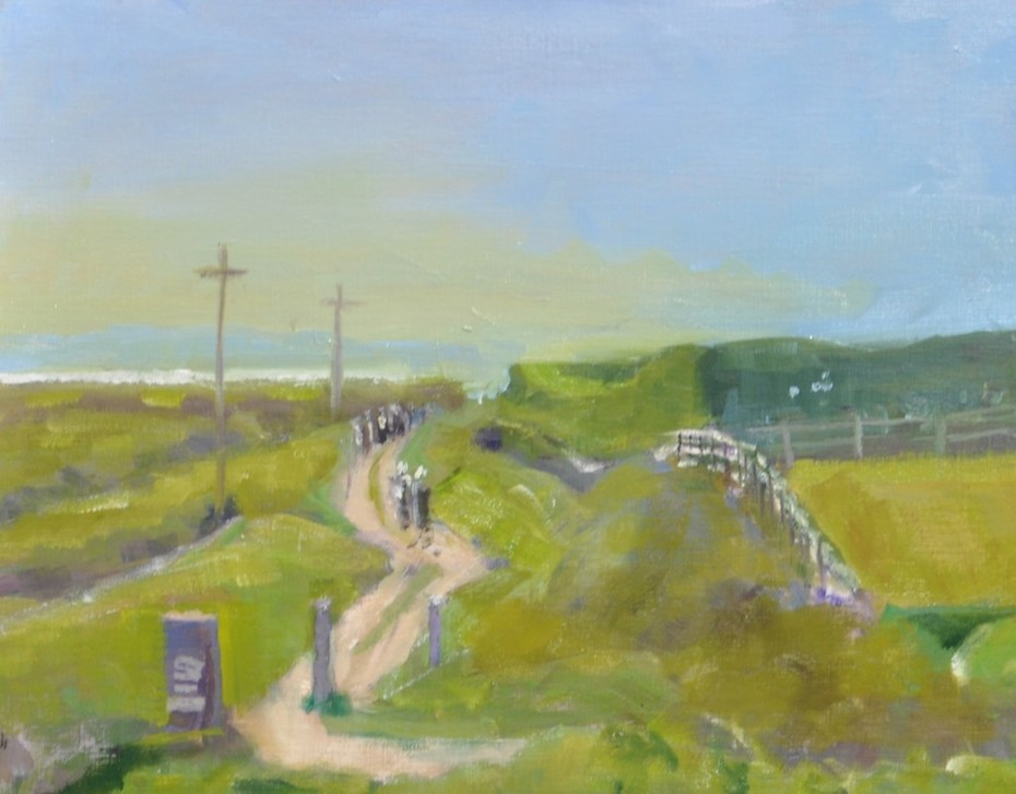 Cliff walk, Howth (4)