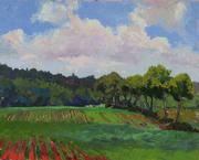 180602 200 Acres, 16x20, oil on canvas