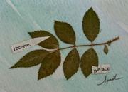 receive peace