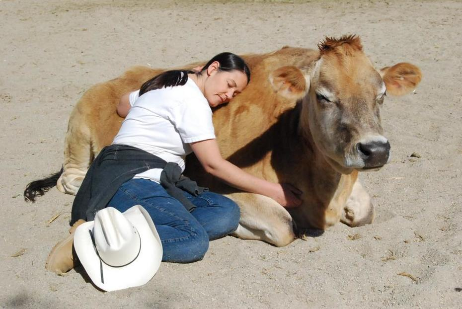 Dear Peacelovers and Peacemakers, do you know the Gentle Barn?  Vous connaissez la Gentle Barn?