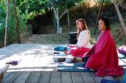 Autumn Turning Inwards Yoga Retreat
