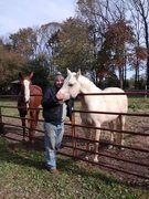 My Horse Friend...