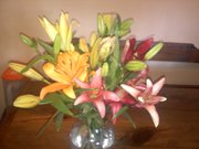 Mother's Day Flowers!