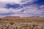 NM, Scenic Byway 61