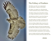 The Fallacy of Feathers