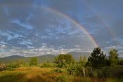 Sunrise Rainbows L