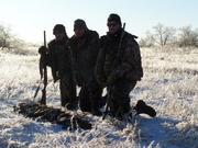Bird Hunting 13