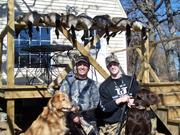 Bird Hunting 16