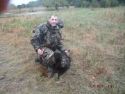 Annual Boar hunt, 2014