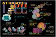Systems Biology & Biotechnology