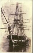 Navy History