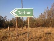 Gauteng - Tarlton
