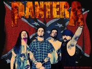 Pantera fans