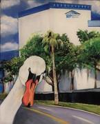 When Swans Photobomb