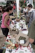 Fruit Harvesters stall at Farmival 02/08/14