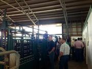 CYL-ers looking at Nature Farms handling facilities