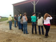 Learning about the feedlot side of the business