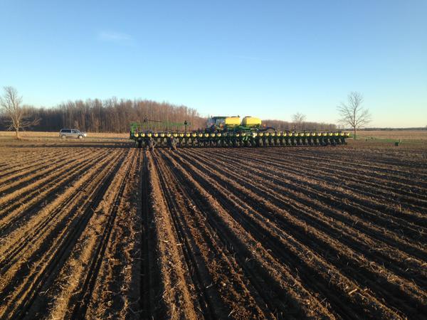 Corn In North of Dashwood. #plant15 from Matt S on Twitter