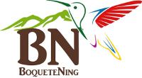 Boquete Ning Logo