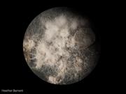 planet_physarum-5