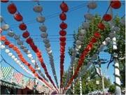 Sevilla Feria de Abril4
