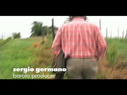 sergio in vineyard