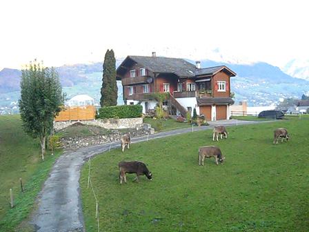 SwitzerlandPictures 473