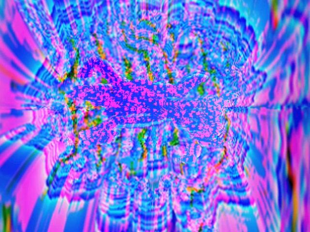 Vortex Frenzy