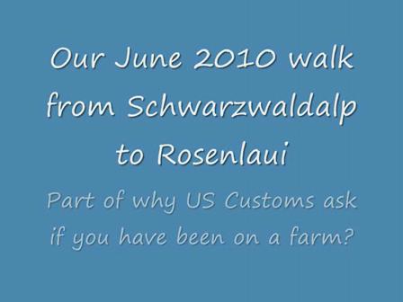 Schwarzwaldalp to Rosenlaui 2010