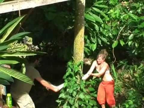 Permaculture Documentary Costa Rica: Part 2 - Punta Mona