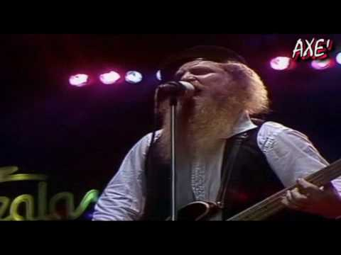 ZZ Top - Beer drinkers and hell raisers