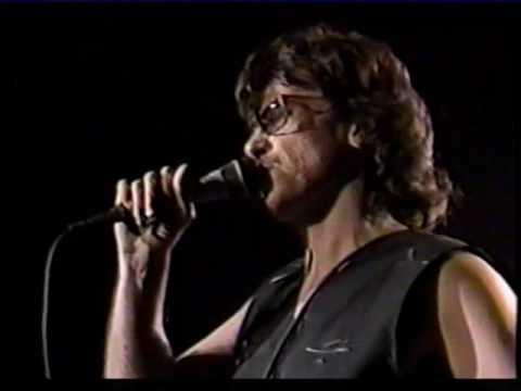 Rock & Roll Rebels - John Kay & Steppenwolf - 1989