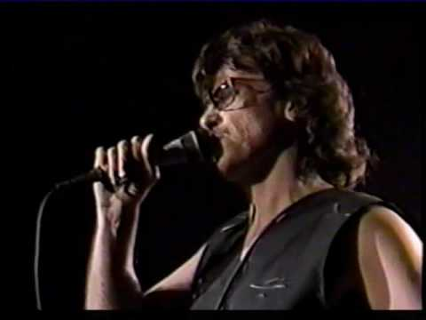 Rock & Roll Rebels - John Kay & Steppenwolf - 1989