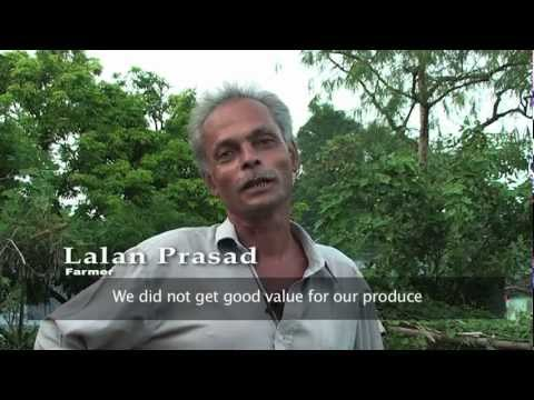 FAO Video: Price Rise - From Food Crisis to Stability