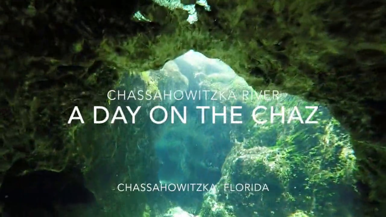 A Day On The Chaz