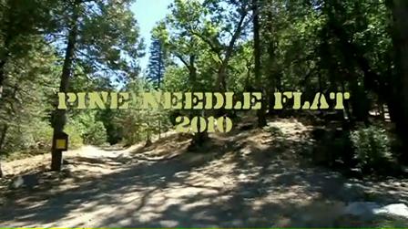 Pine Needle Flat 2010