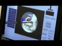 Simulation: MUVES: Melbourne University Virtual Environments for Simulation