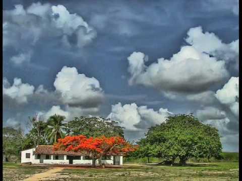 Vivência - Banda de Pau e Corda (Por DiAfonso)