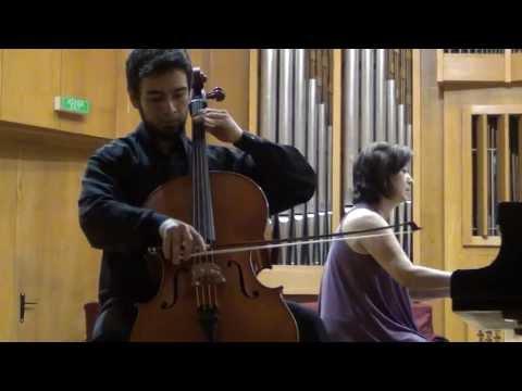 Schumann: Adagio und Allegro - Davi Barreto & Nara Vasconcelos