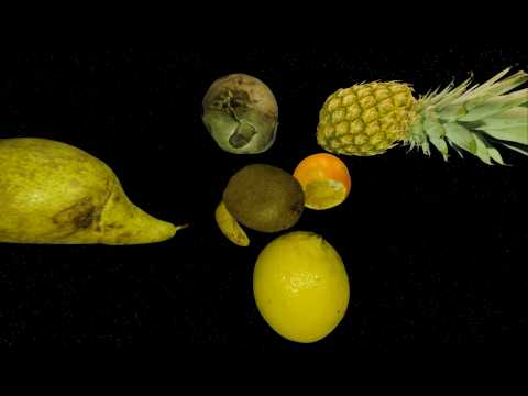 Ninja Moped / Rymdreglage - Fruits.avi