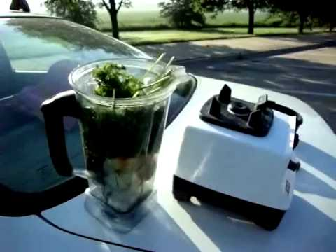 George Mihaly-Green Smoothie on the Road-www.BusyJack.com