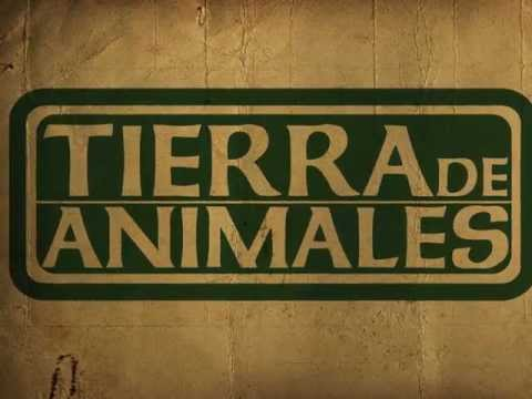 Ya conoces Tierra de Animales? You know is Tierra de Animales?
