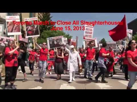 Toronto March to Close All Slaughterhouses 2013