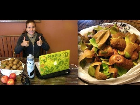 What on Earth is a Mono Meal & Why Should I Eat Them!?