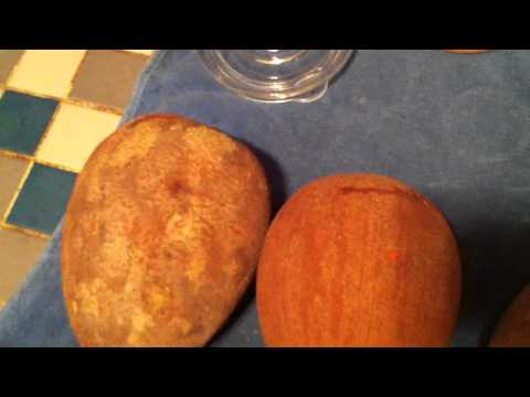 How to do the Mamey Scratch Test