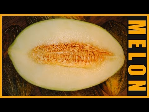 KNOW YOUR FRUITS EPISODE 7: PIEL DE SAPO/SANTA CLAUS MELON