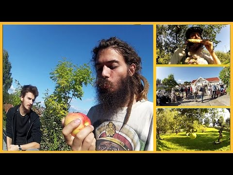 AUTUMN APPLE VLOG: LOCAL MARKET, APPLE ORCHARD AND SWEET CORN!