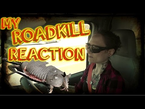 What I Do With Roadkill + Hanging With You in A Sleazy Motel