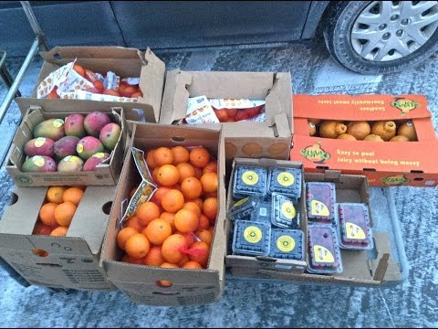 Winter Wholesale Fruit Haul