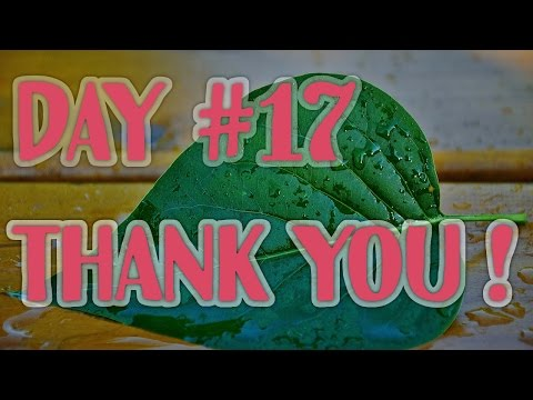 Not another Fruit Diary #17 : THANK YOU !